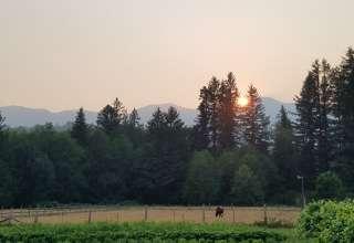 Wildwood Farms Camp