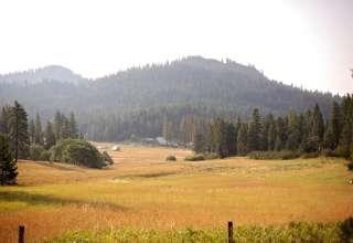Willow-Witt Ranch