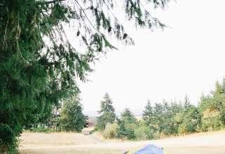 Fern School Farm
