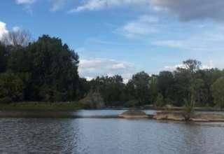 Georges Riverside Jungle Camp