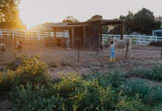 Organic Goat Farm RV