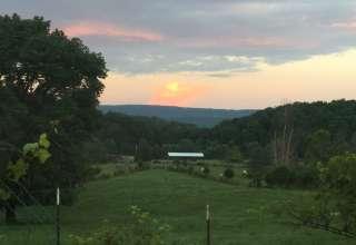 Springhorn Ranch