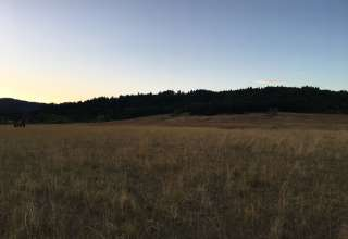 Oak Creek Farm Camp