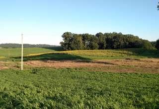William E.'s Land