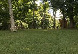 Peaceful Camp Near Cincinatti