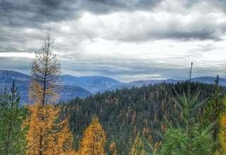 Mercill Mountain Wilderness