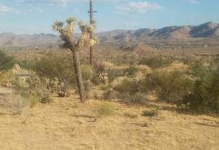 Big R Ranch