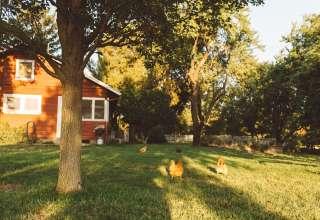 Sterling Creek Ranch