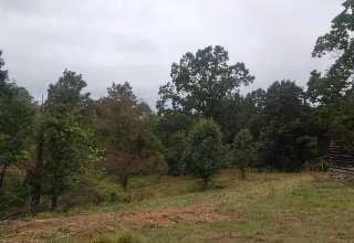 James B.'s Land