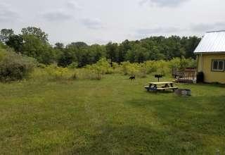 Bear Food Farm & Orchard