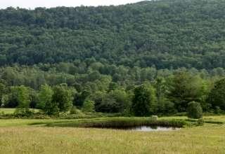 Rune Hill Sanctuary