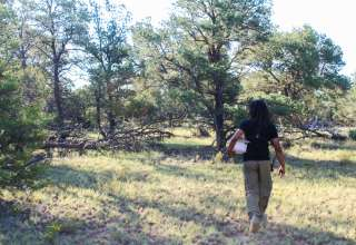 Mujeres Valley Campground