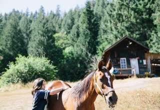 Mt Rainier Horse Haven