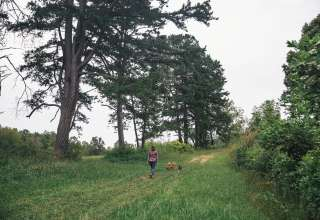 Rippetoe Farm