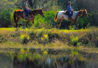Myakka Trail Rides