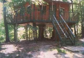 Treehouse People
