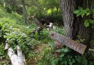 Silver Creek Springs, Clayton
