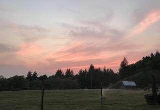 T&K Lonetree Ranch
