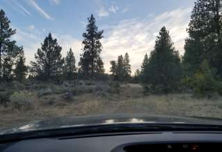 Oregon's Backyard Experience