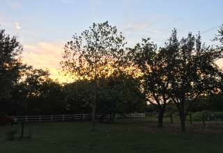 Byrdling Farm