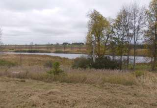 5 Secluded Acres on River