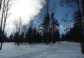 Young Lake Hills