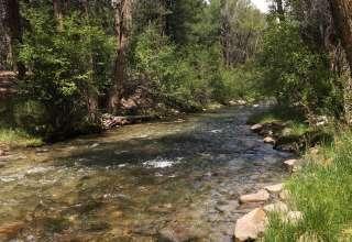 Creekside Hot Springs Cabin