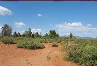 Dina H.'s Land