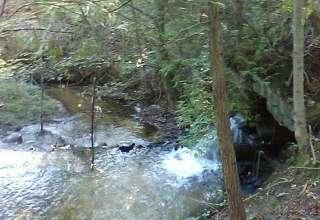 Doriath Springs