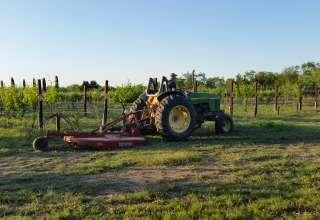 Lakefront Vineyard & Winery
