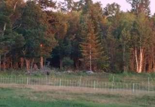 Hatch Knoll Farm