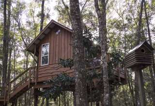 Treehouse Cabin Retreat