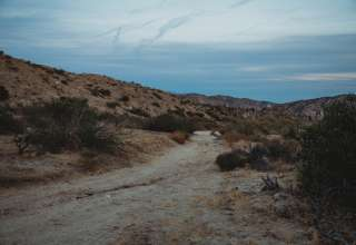 Sand to Snow Desert Oasis Camp