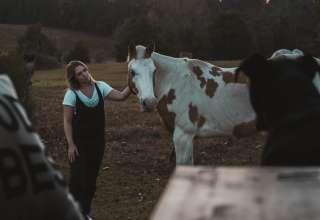 Six Brier Farm