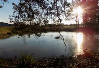 27 Acres Ozarks Farmland