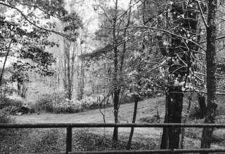 Part of Small Private Farm