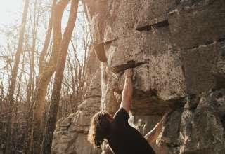 Dogwood Climbing