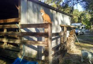 Goat House Farm
