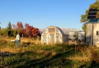 JuNo Farms slice of heaven