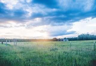 Duff's Farm