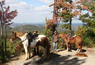 Twin Valley Horse Ranch