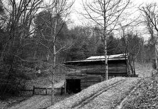 Dawn's Farm