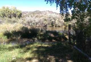 Aurolyn L.'s Land