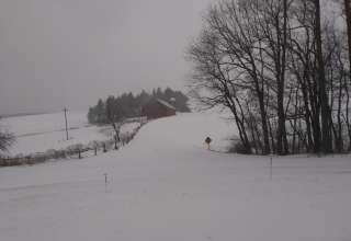 Braddock Trail View