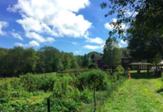 Sunstone Farm