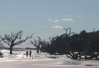 Edisto Island Retreat