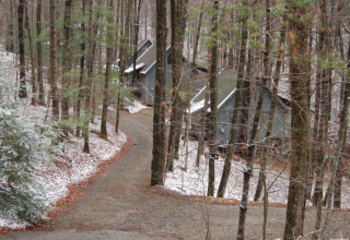 Blood Mountain Cabins