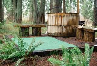Schafer Boom Wetland Wilderness