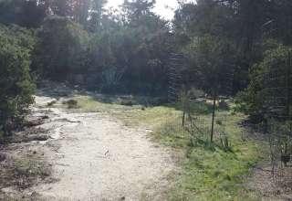 Angela S.'s Land