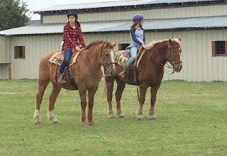 Golden Curls Ranch